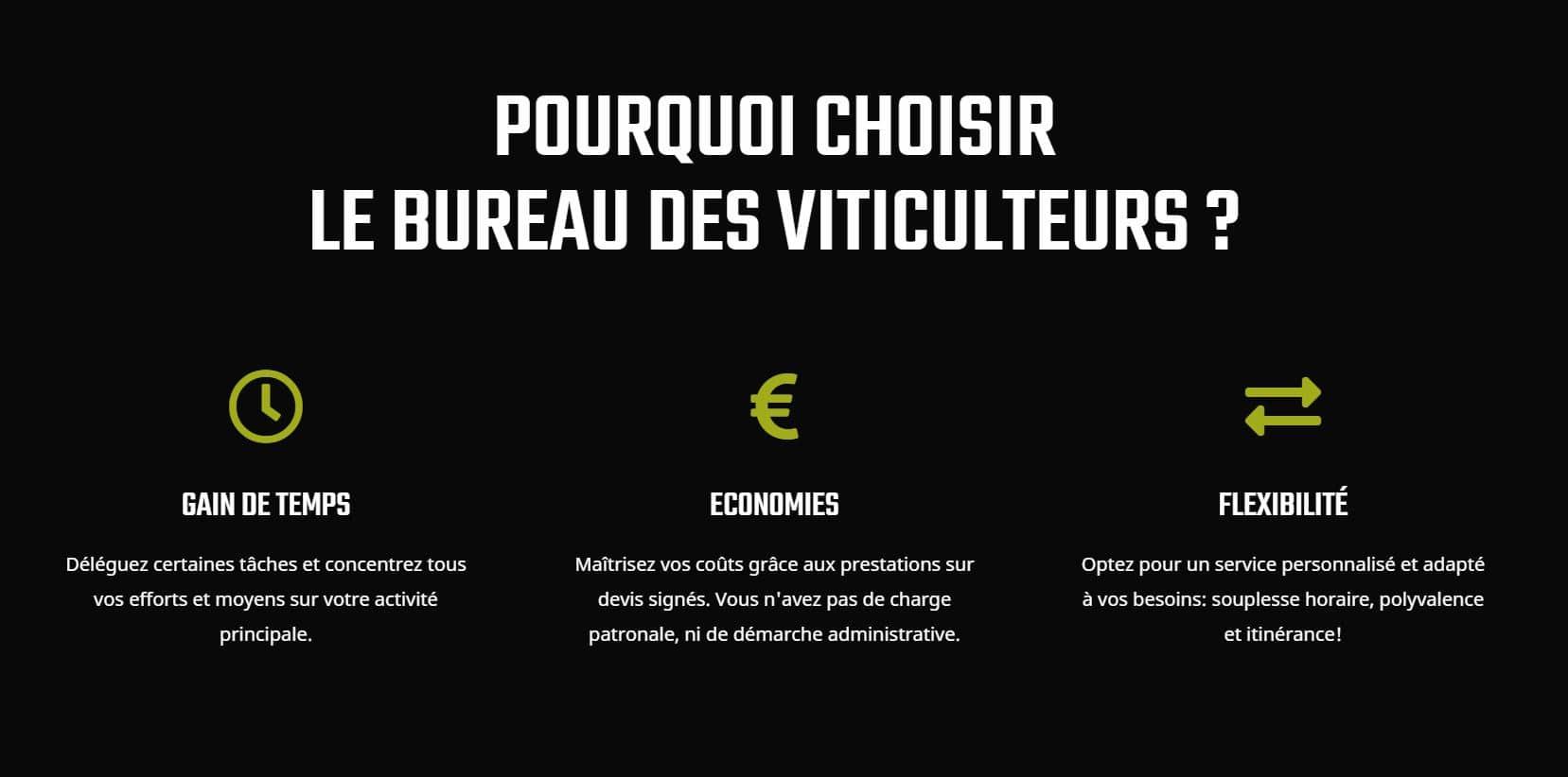 création site internet pour auto entrepreneur Toulouse occitanie, haute Garonne 31000 muret montauban albi castres tarbes auch, blagnac, cugnaux, balma