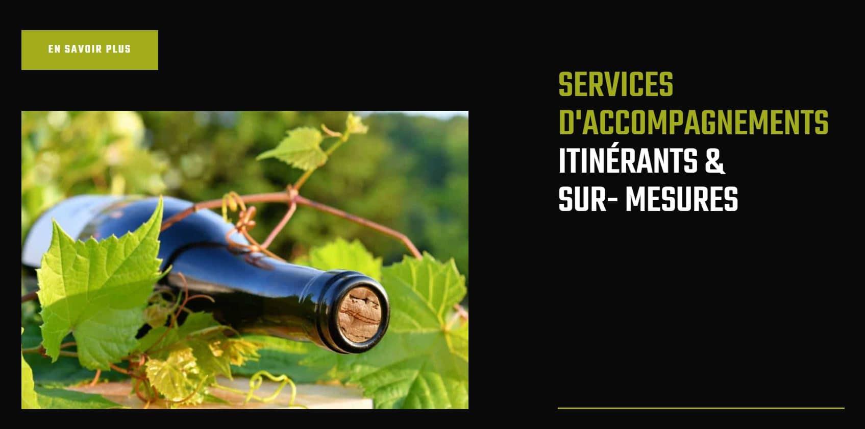 création site internet pour auto entrepreneur Toulouse occitanie, haute Garonne 31000